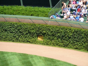 This is the inspiration for the Chicago Cub Fan Cemetery, Center Field, Wrigley Field wall 400